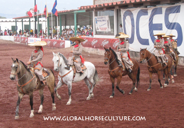 Mexicohorses 3