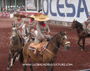 Mexicohorses 1