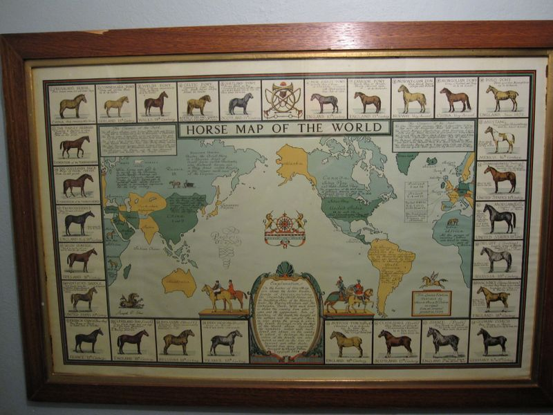 Horse map of world